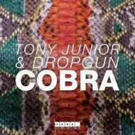 Tony Junior, Dropgun - Cobra (Original mix)