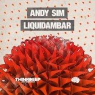 Andy Sim - Hope (Original mix)