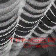 TAYSER - Dream (Original Mix)