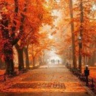 DemetreoS - Autumn (Original mix)