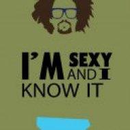 LMFAO - Im Sexy And I Know It (Artful Fox Bootleg Remix)