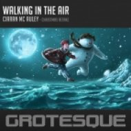 Ciaran McAuley - Walking In The Air (Original Mix)