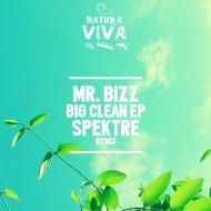 Mr. Bizz - Big Clean (Spektre Remix)