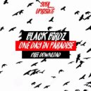Black Birdz - One Day in Paradise (Original Mix)