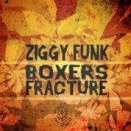 Ziggy Funk - Moving (Original Mix)