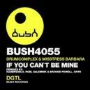 Misstress Barbara, Drumcomplex - If You Can\'t Be Mine (GNTN Remix)