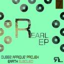 Dubbz Afrique\' Projek - Earth Subdued (Original Mix)