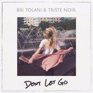 Bri Tolani & Triste Noir  - Don\'t Let Go (Original Mix)