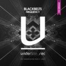 Blackbelts  - Frequency (Original Mix)