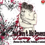 Spin Worx & Bibi Provence & Fka Mash - Loving You (Fka Mash Remix) ()