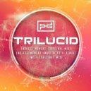 Trilucid - Endless Moment (Martin Roth Remix) (Original Mix)