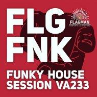 Flagman Djs - Lost In Music EFNK (Original mix)