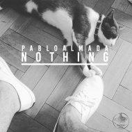 Pablo Almada - Nothing (Original mix)