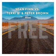 Sean Finn vs. Terri B! & Peter Brown - Free (Leandro Da Silva Remix) (Original Mix)