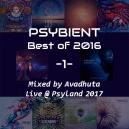 Avadhuta - Psybient: Best of 2016, Vol.1 (Live @ Psyland 2017) (Original Mix)