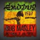 Bob Marley  - Exodus (Igor Sensor mix)