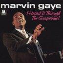 Marvin Gaye  -   I Heard It Through The Grapevine (Hollywood Jack & Just @MI Remix) (Original Mix)