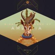 Amentia - Miracle D\'Hwange (Armen Miran Remix) (Original Mix)