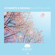 myni8hte & Deidian - Kaze (Original Mix)