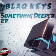 Blaq Keys - Falling Stars (Original Mix)