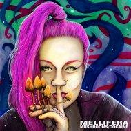 Mellifera - Mushrooms (Original Mix)