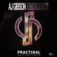 AJ Gibson - Emergence (Original Mix)