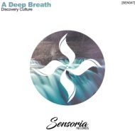 Discovery Culture - A Deep Breath (Radio Edit)
