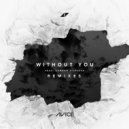 Avicii, Sandro Cavazza - Without You (Otto Knows Remix)