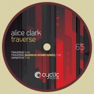 Alice Clark - Traverse (Markus Homm Remix) ()