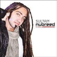 Sultan & Ned Shepard - Verona (Original Mix)
