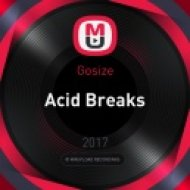 Gosize - Acid Breaks (Original Mix)