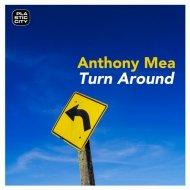 Anthony Mea - Turn Around (Original Mix)