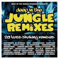 DJ Hybrid - Run Pon Dem (Tony Jungle Remix)
