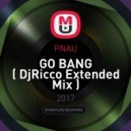 PNAU - GO BANG  ( DjRicco Extended Mix )