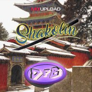 DFB - Shakolin (Orig Mix)