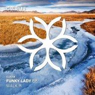 Walk:R - Funky Lady (Original Mix)