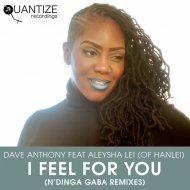 Dave Anthony feat. Aleysha Lei Of Hanlei - I Feel For You (N'Dinga Gaba Instrumental) ()