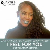 Dave Anthony feat. Aleysha Lei Of Hanlei - I Feel For You (N'Dinga Gaba Remix)  ()