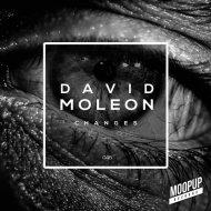 David Moleon   -  Armony Sense  (Original Mix )