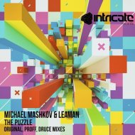 Michael Mashkov & Leaman  - The Puzzle (PROFF Remix)