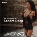 Alexey Gavrilov - Sonare Deep_ vol 17 (no Jingle) ()