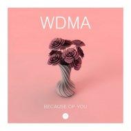 WDMA - Because of You (Original Mix)