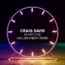 Craig David - Heartline (Callum Knight Remix)