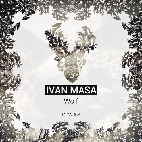 Ivan Masa - Wolf  (Original Mix)