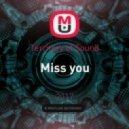 Territory of Sound - Miss you (original mix)