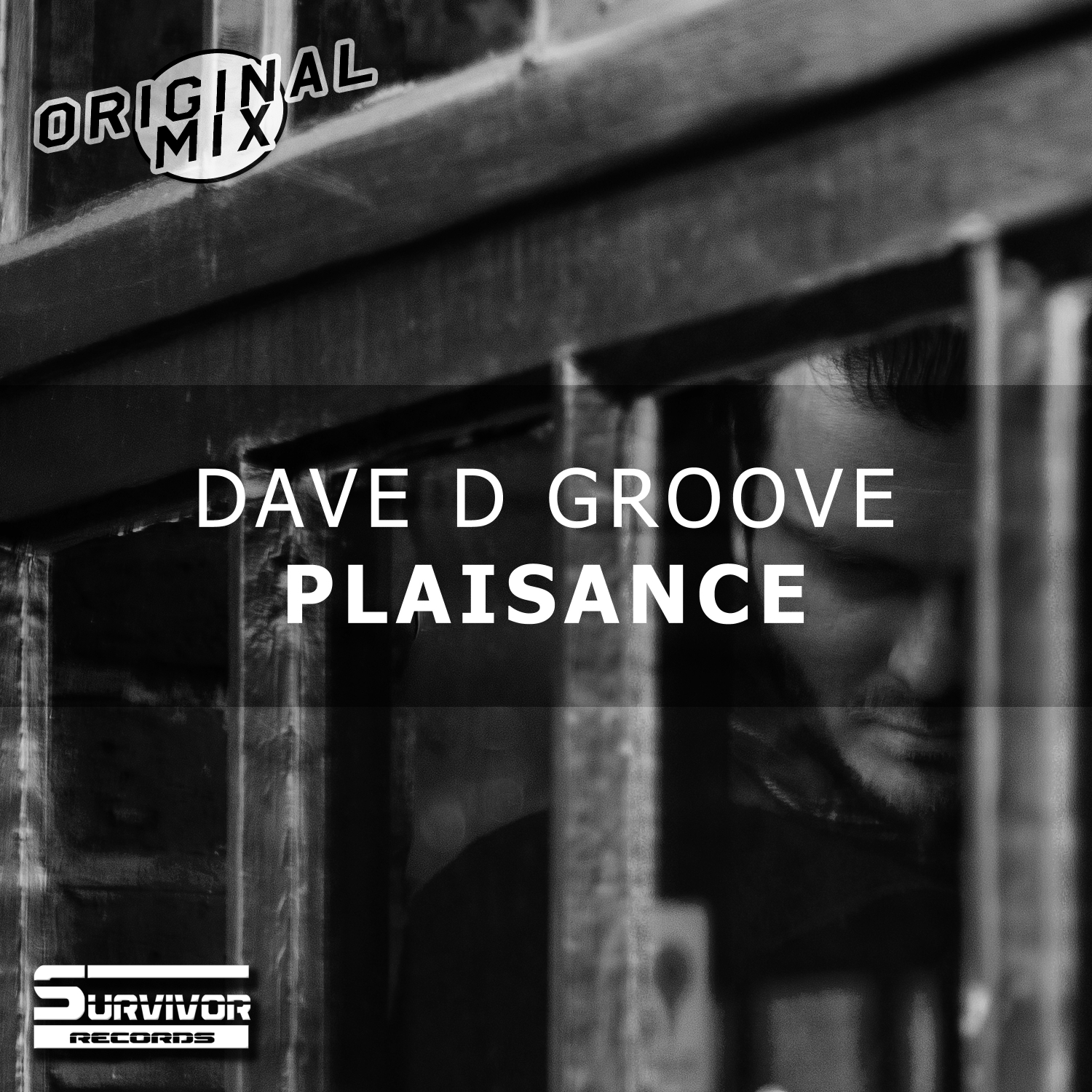 Dave D Groove - Plaisance (Original Mix)