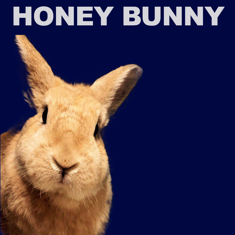 Honey Bunny - Go Into Trance (Original mix)