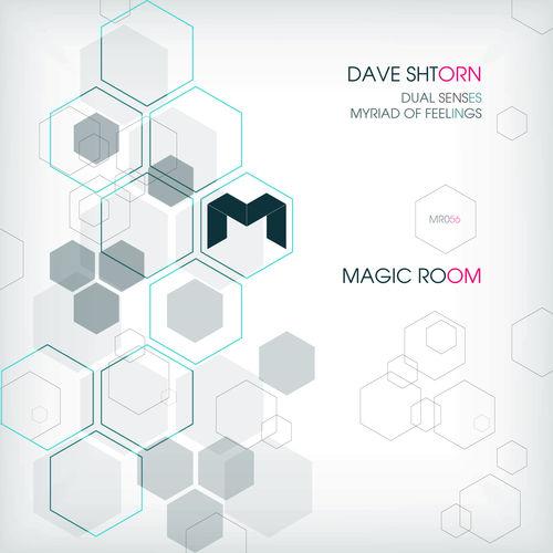 Dave Shtorn - Dual Senses (Original Mix)