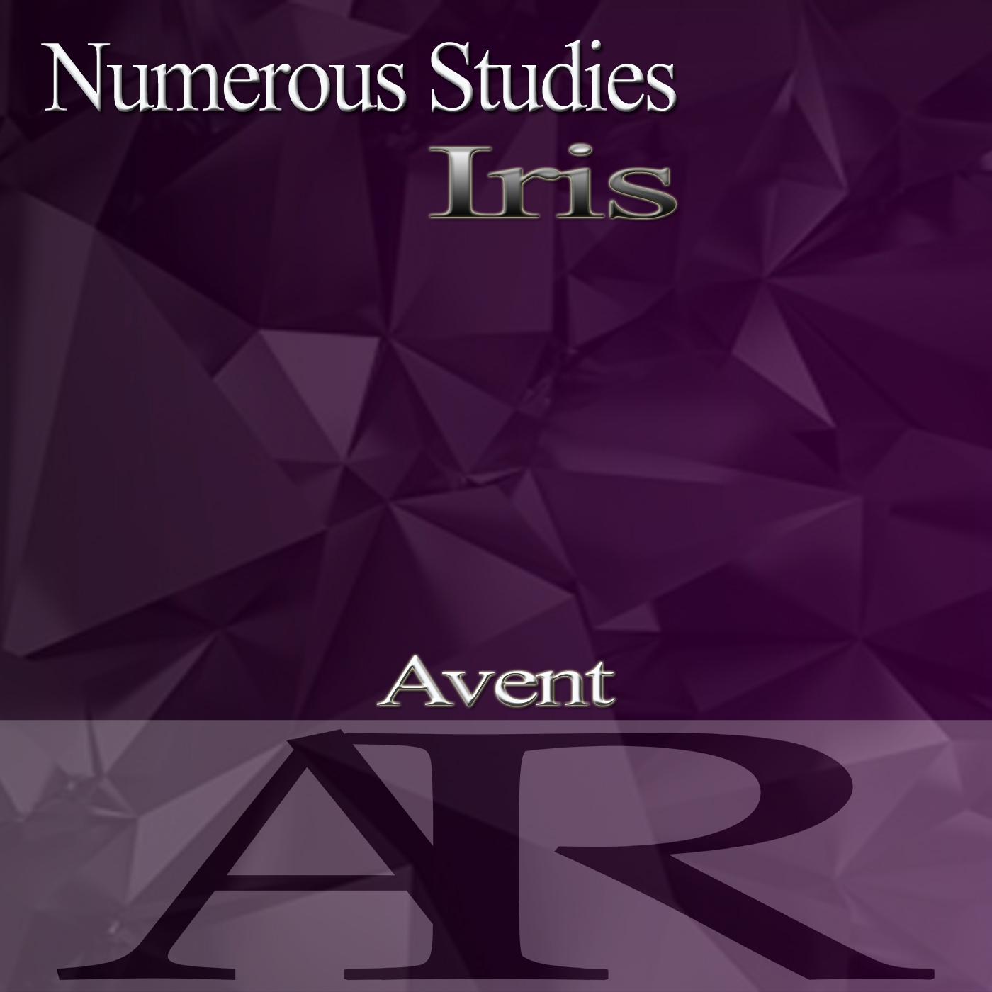 Numerous Studies  -  Iris (Original Mix)