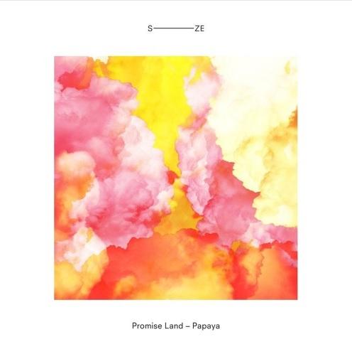 Promise Land - Papaya (Original Mix)